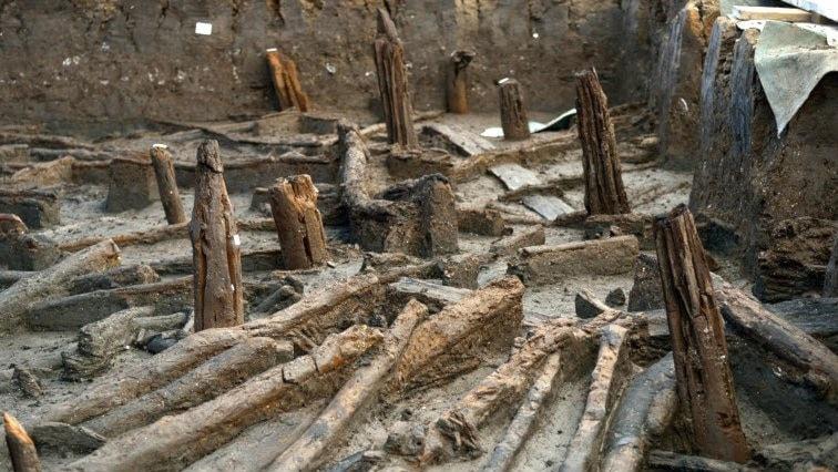 Rester av pålar och taktimmer från bronsåldersfyndet vid engelska Whittlesey. Foto: Dave Webb.