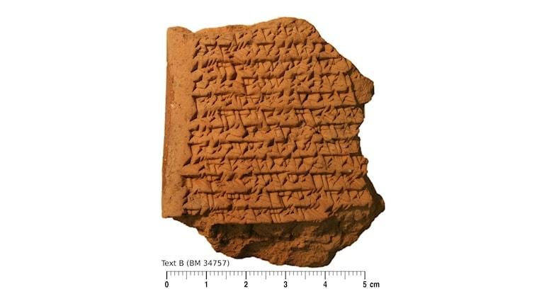 En bild med den fem gånger fem centimeter lilla lertavlan. Foto: Trustees of the British Museum/Mathieu Ossendrijver