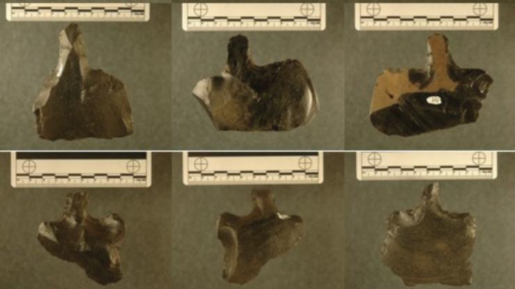 En bild på sex stycken olika uthuggna stenbitar som man nu istället tror har varit någon form av verkyg.