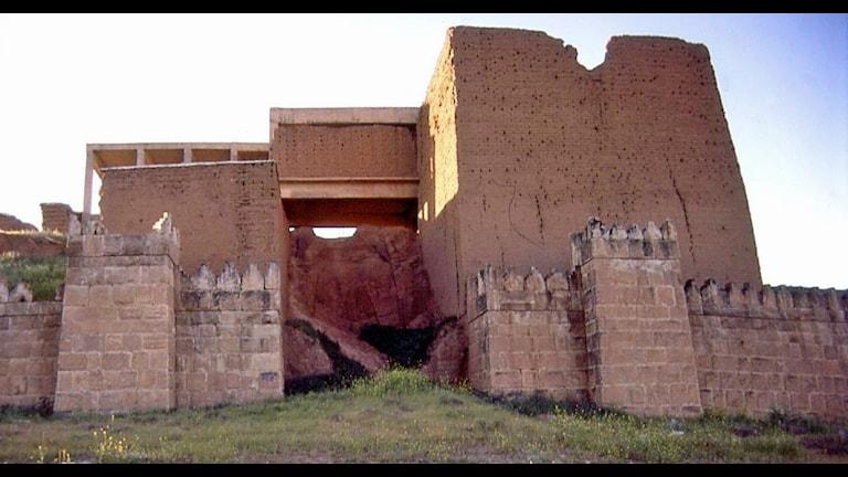 Stadsport till Nineveh