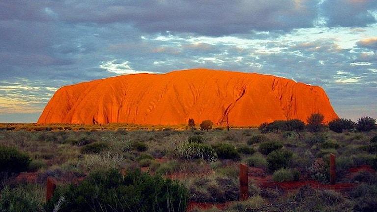 Uluru i solnedgång