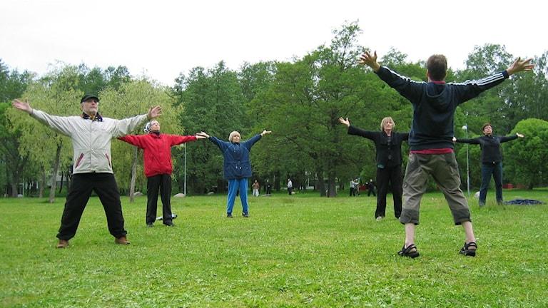 En bild på fem äldre människor i en park som följer en ledare och motionerar.