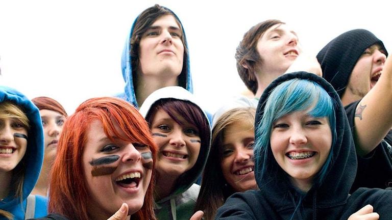 En bild på en liten grupp med ungdomar på en konsert.