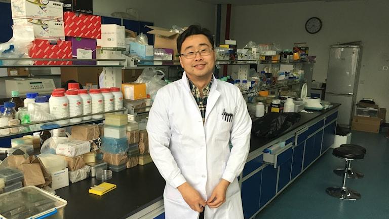 Dr. Yang Wang är en av forskare vid Kinas Lantbruksuniversitet som upptäckte den nya sortens kolistinresistenta bakterier hos djur och människor i höstas. Foto: Johan Bergendorff / SR