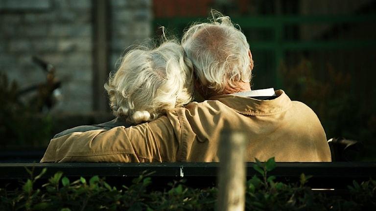 Ett äldre par sitter och håller om varandra på en parkbänk. Fotot är taget bakifrån, mannens arm ligger runt kvinnans axlar.