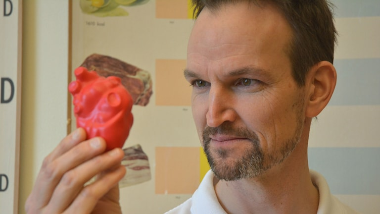 Johan Sundström tittar på ett hjärta