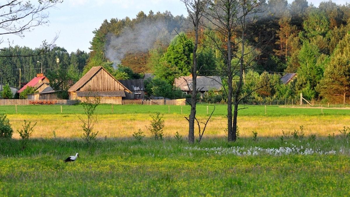 Äldre by i Polen.