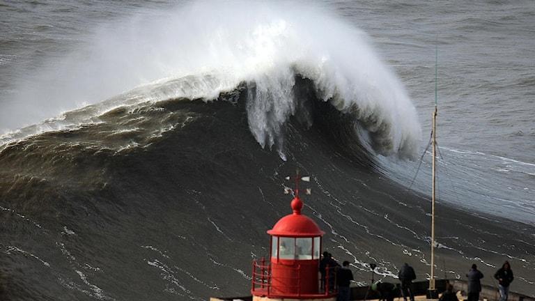 Stormigt hav.