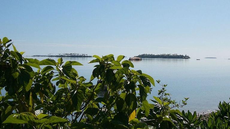 Kust på Tongaöarna