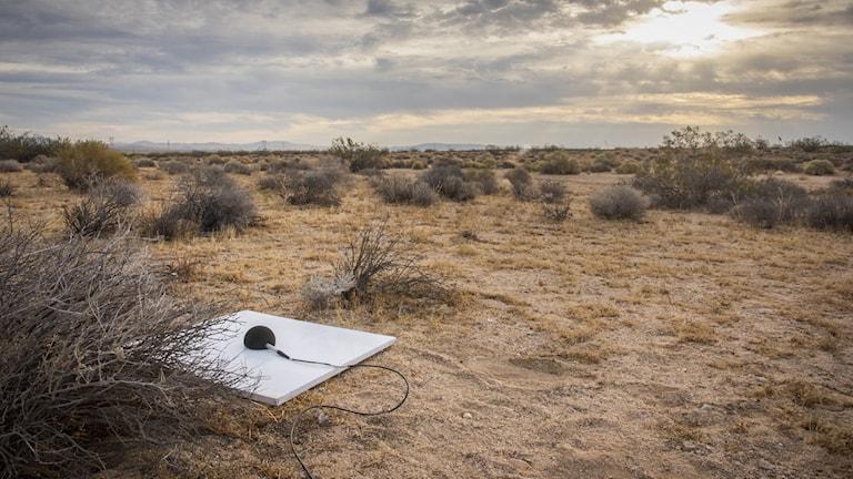 En av mikrofonerna som placerats ut i öknen.