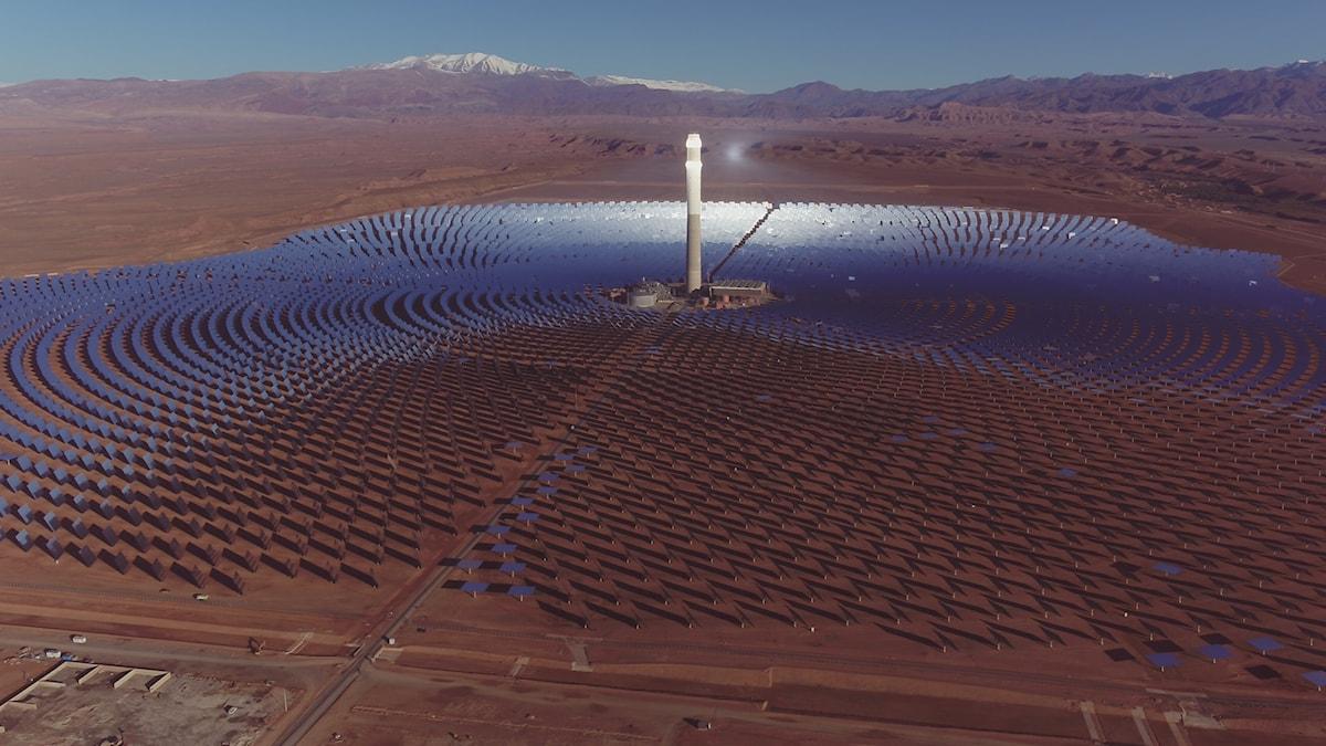 Solcellsparken Noor i Marocko. Över en halv miljon speglar och högt torn