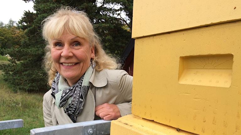 Gul bikupa i förgrunden. Eva Forsgren tittar fram bakom kupan, blont hår, mönstrad svartgrå scarf och grå kappa. Gröna buskar i bakgrunden