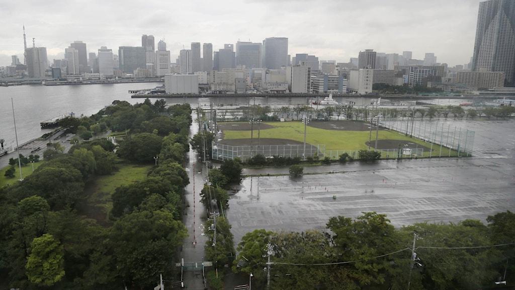 Grönska och vatten i förgrunden. Tokyos skyline bakom.