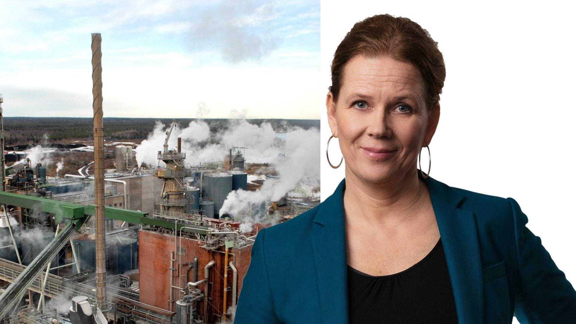 Första året med Sveriges Radios klimatkorrespondent