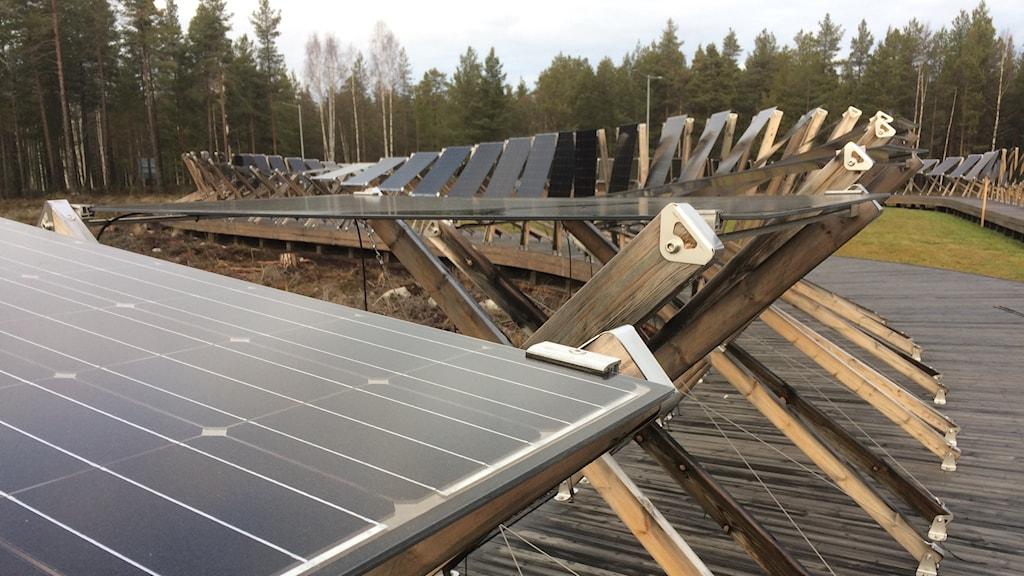 Solceller i olika vinklar står på rad.