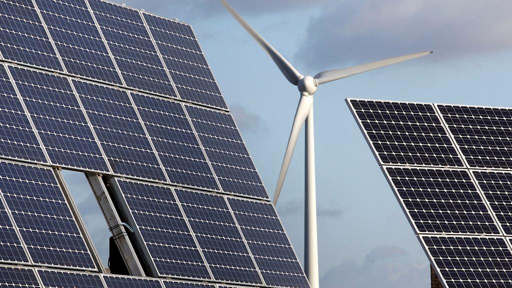 vindkraftsnurra bakom solpaneler