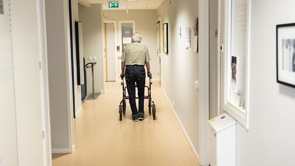 Äldre man går med rullator i en korridor.