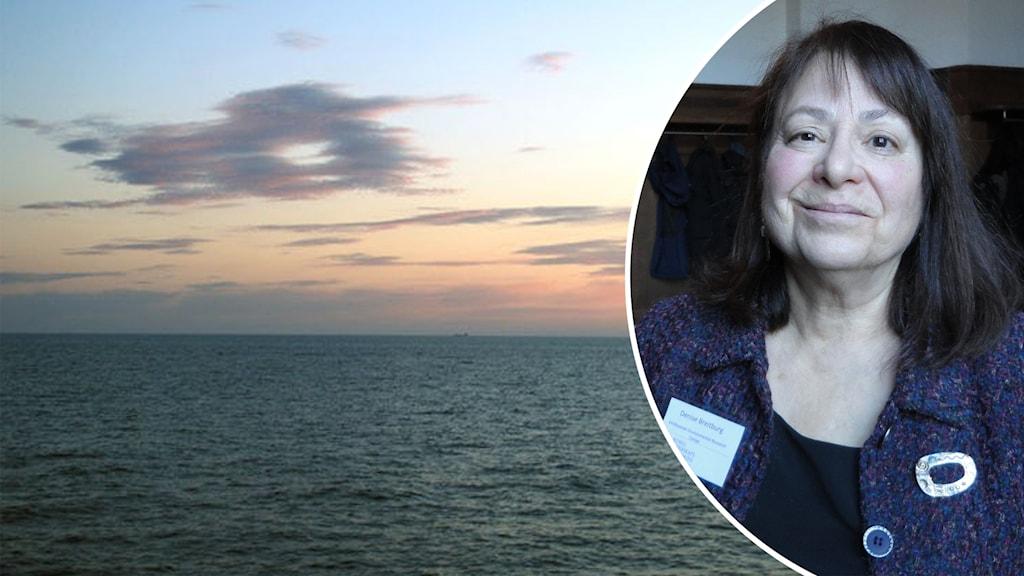 Delad bild. Den vänstra på Östersjön i solnedgång. Den högra en porträttbild på Denise Breitburg.
