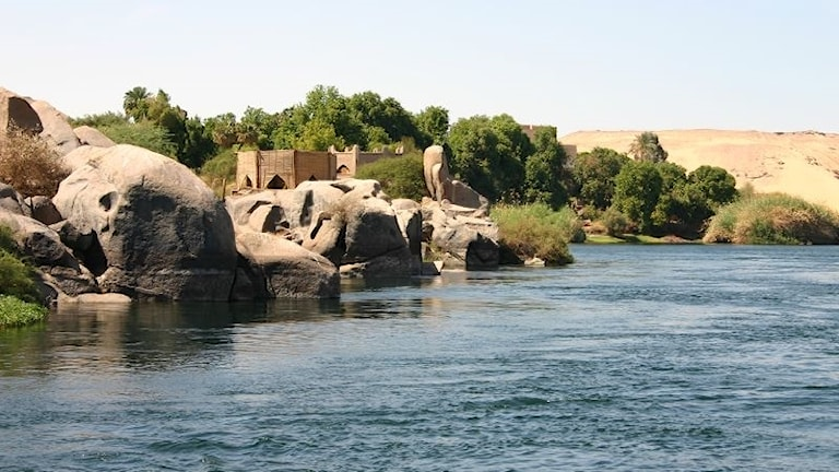 Nilens flodbank