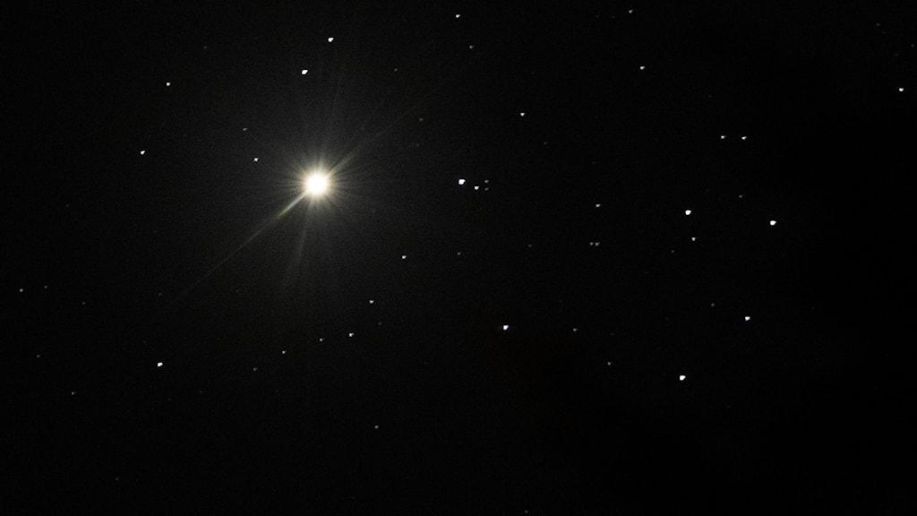 Planeten venus som en vit prick på natthimlen