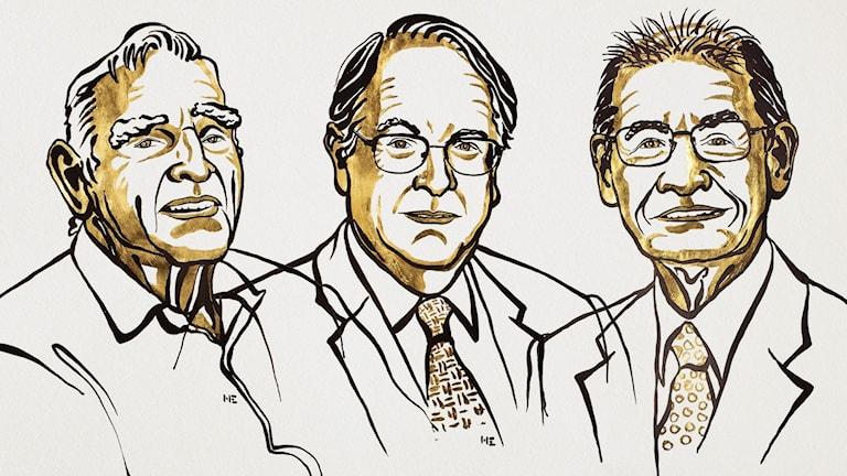 John B Goodenough, M Stanley Whittingham och Akira Yoshino delar på årets Nobelpris i kemi.
