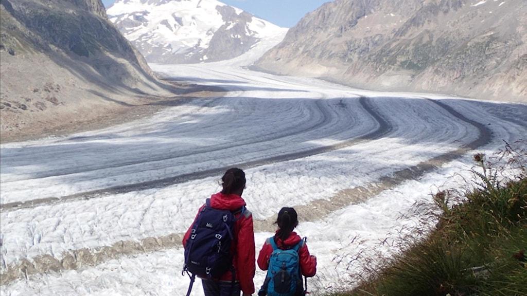 Aletsch i Schweiz