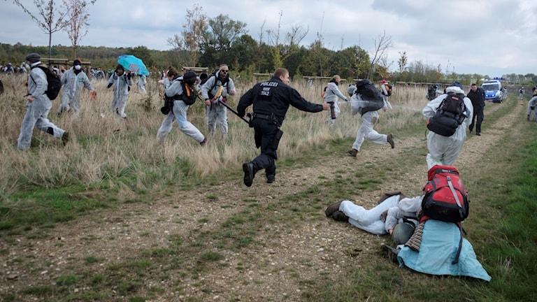 Aktivister jagas på ett fält av en polis med pepparspray.