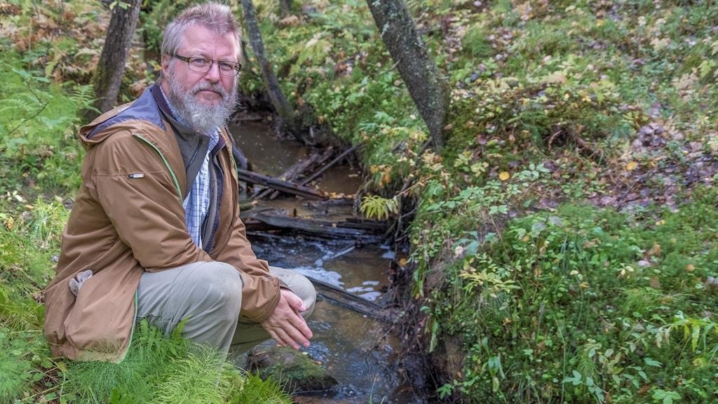 Entomologen Per-Ola Hoffsten vid en bäck.