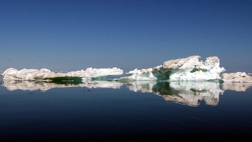 Havsis utanför Alaska under sommaren 2012.