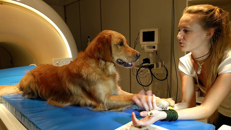 Hund och matte vid magnetkamera.