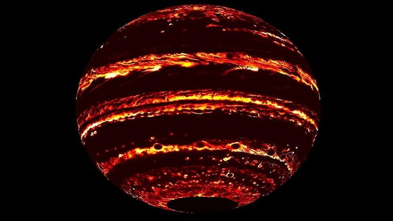 En bild på Jupiter skapad från mätningar från rymdsonden Juno. Planeten är mörk och syns mot en svart bakgrund med gulröda lysande band.