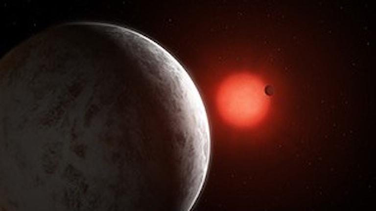 Två planeter snurrar runt en röd stjärna.