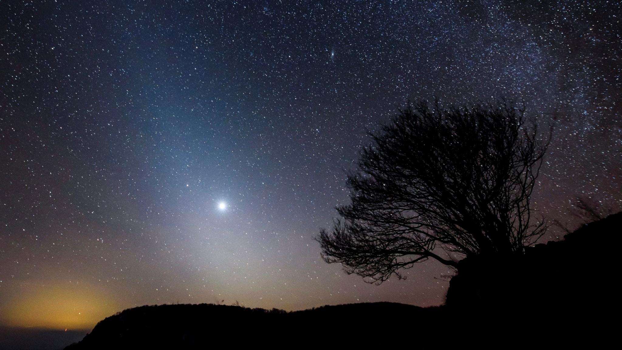 Dags att räkna de stjärnor som syns bakom lamporna