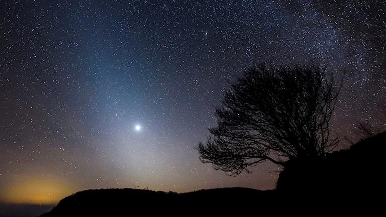 Natthimmel med stjärnor i Ungern.