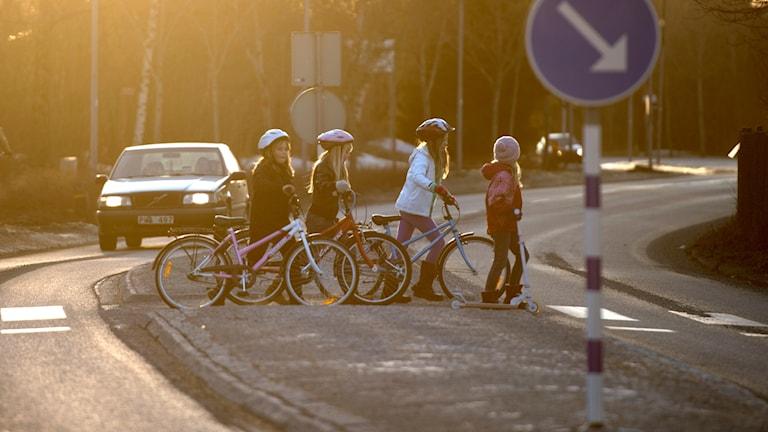 fyra barn står med sina cyklar vid ett övergångsställe. En bil närmar sig.