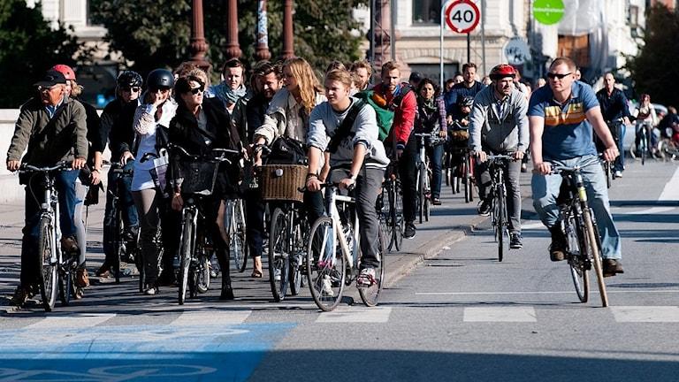 cyklister i köpenhamn väntar på grönt ljus