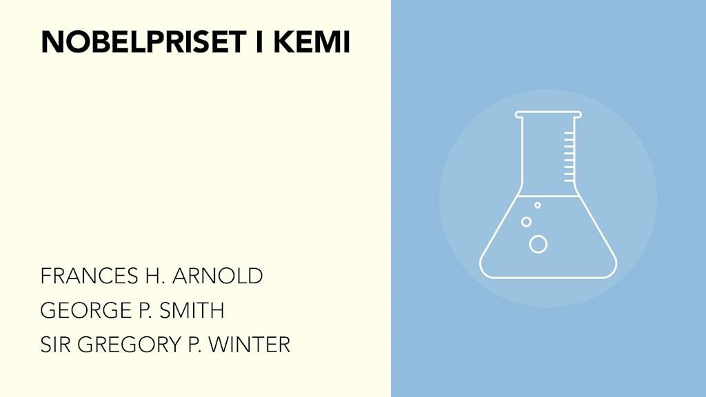 Nobelpriset i kemi går till Frances H. Arnold, George P. Smith och Sir Gregory P. Winter
