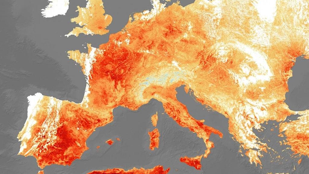 Karta över stora delar av Europa med vita, gula och röda fält.