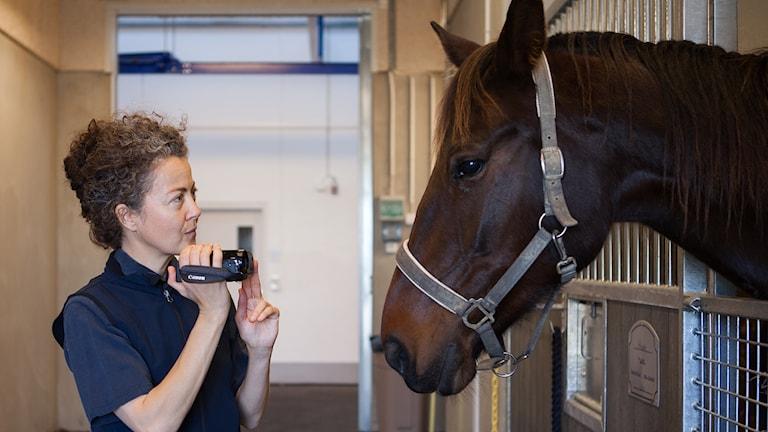 Britt Coles står framför en hästbox med en liten kamera. En häst tittar ut.