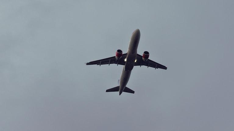Mörk flygplanssiluett rakt underifrån mot blågrå himmel. Passagerarflygplan.