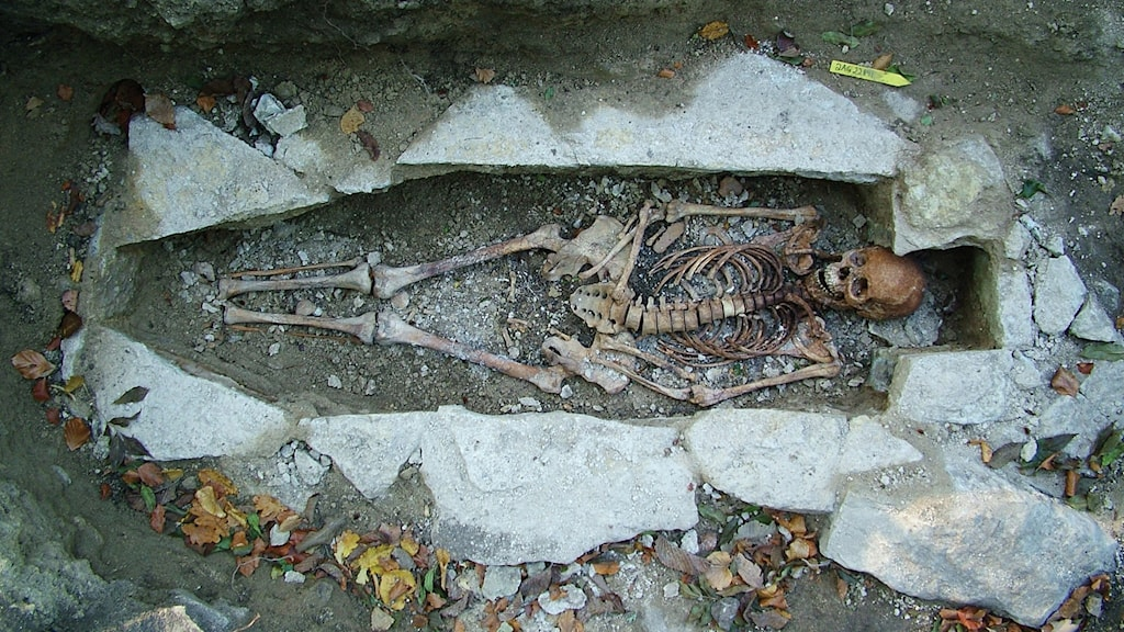 Ett skelett i en grop i marken, omgärdad av stenbumlingar.