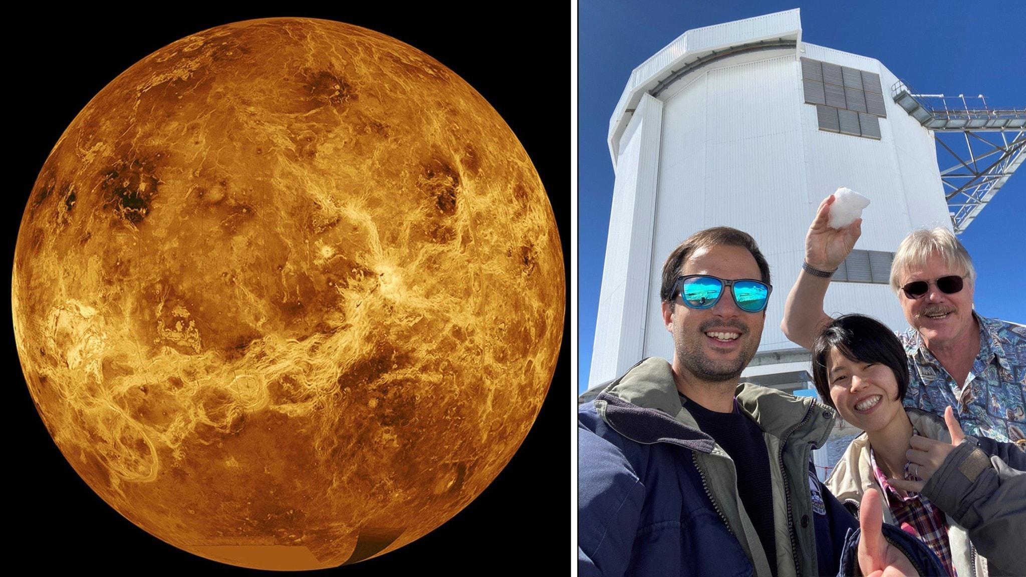 Liv på Venus?