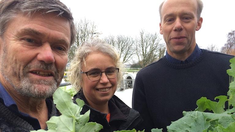 Porträttbild på Rolf Spörndly, Anna Laurell och Anders Carlsson.