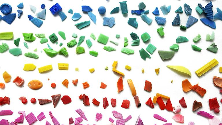Mikroplastskräp insamlat i världshaven under Malaspina expeditionen 2010. Foto: ©CSIC