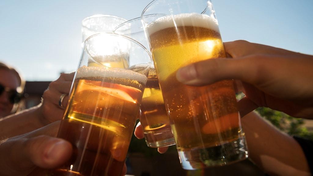 Fyra glas öl möts i en skål i solen.