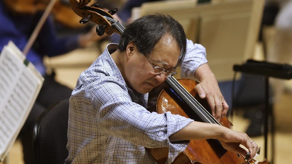 Asiatisk man i rutig skjorta spelar cello