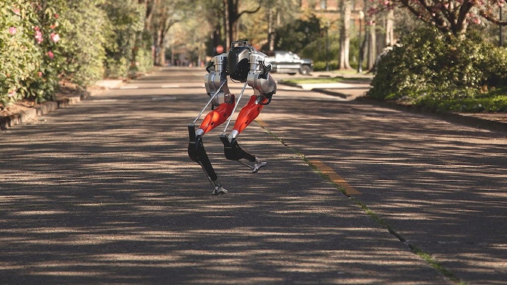 Cassie the robot sprang 5 km.