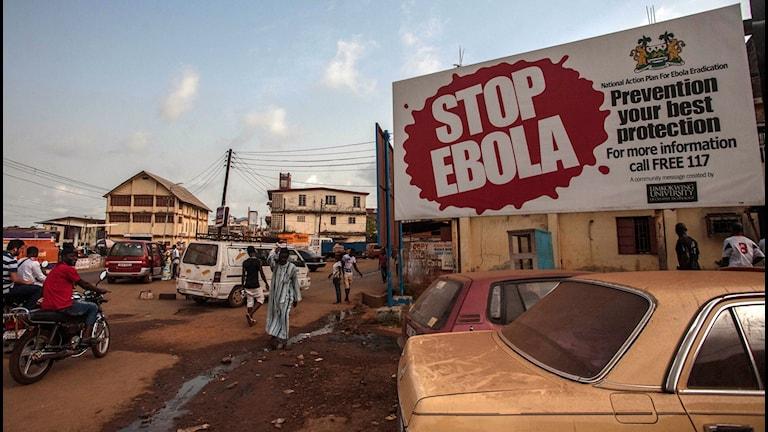 """Skylt """"stop ebola i vid en gatan med bilar"""