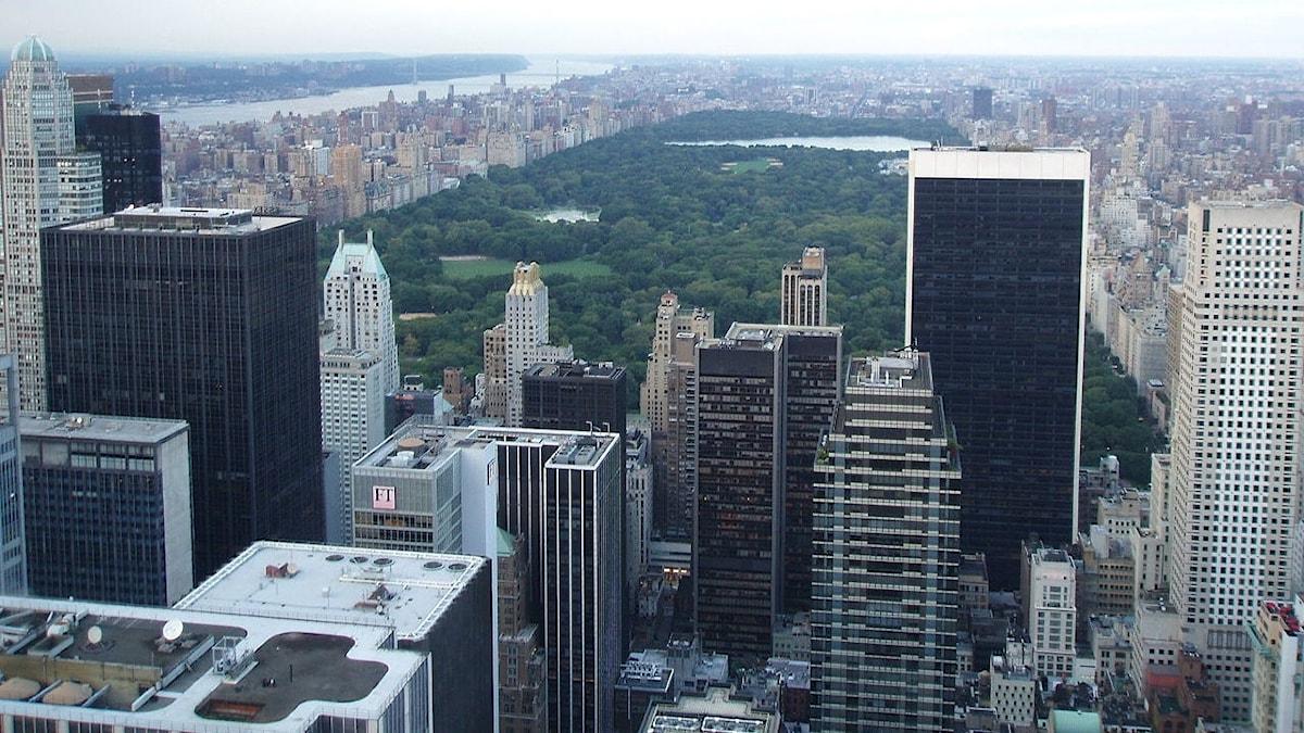 Central Park i New york sedd uppifrån
