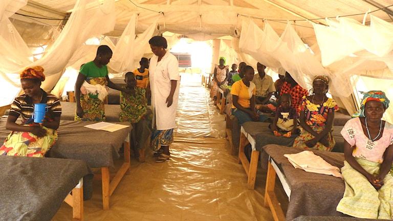 Över 1000 pers i Demokratiska republiken Kongo förgiftades av falskmedicin